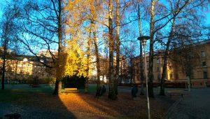 Ullevål Hospital, home to NevSom, on a crisp November morning